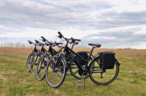 Ar velosipēdu pa piejūras pļavām